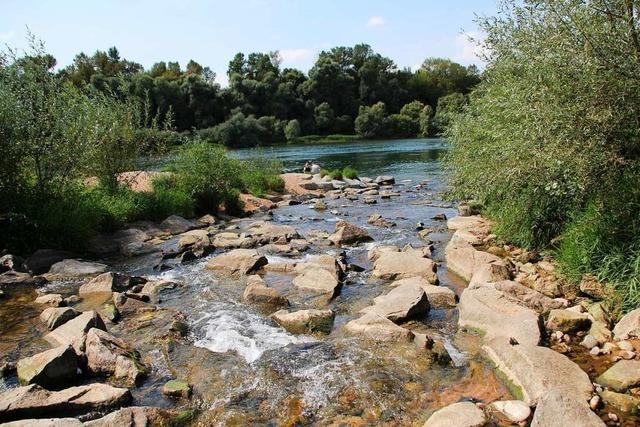 Der Hochwasser-Rückhalteraum im Landkreis Lörrach ist fertiggestellt