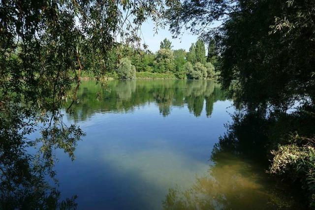 Mit der Rheinbegradigung wollte Tulla den wilden Fluss zähmen