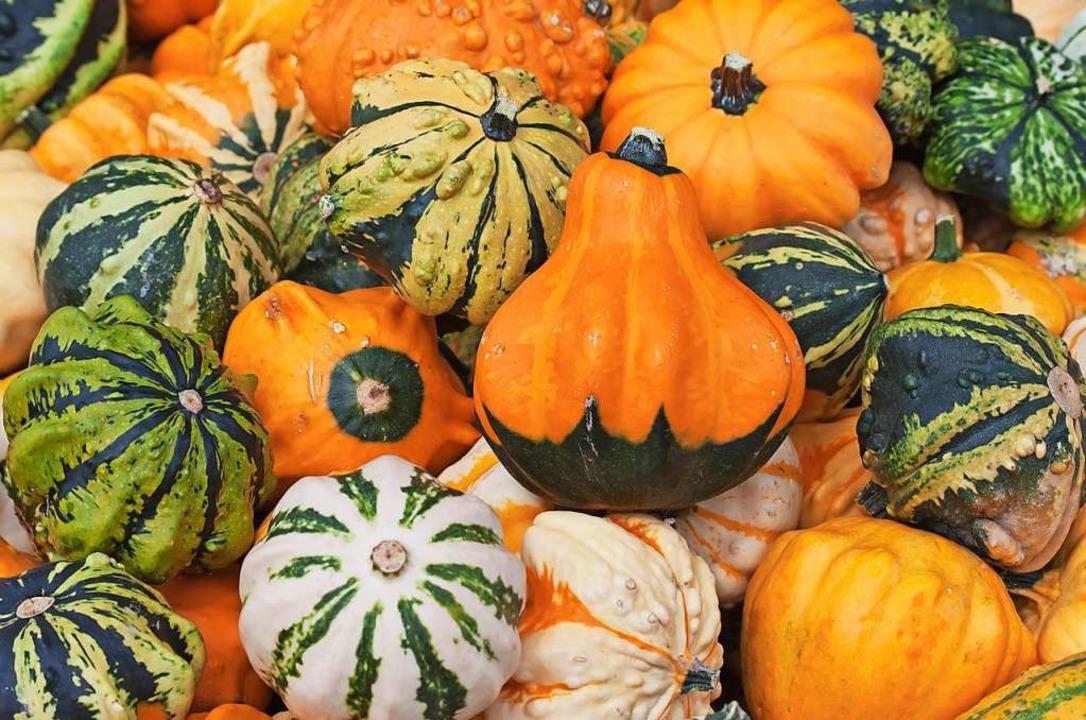 Kerne und Öl aus pestizidfrei angebaut...rbissen sind ein Geschäft. Symbolbild.    Foto: fotolia.com/swisshippo