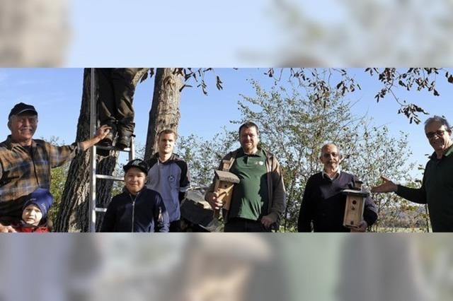 Angler bauen Vogelhäuser