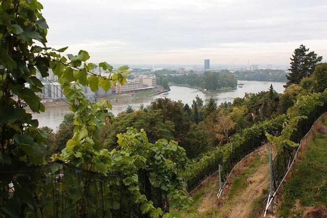 Das Weingut am Grenzacher Horn ist Badens südlichste Reblage