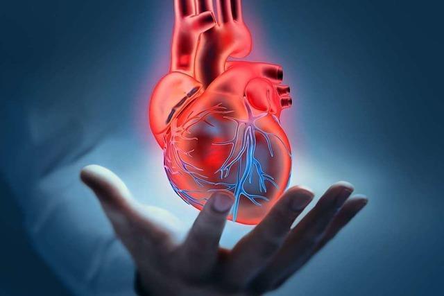 Telefonsprechstunde mit lokalen Kardiologen kommt gut an