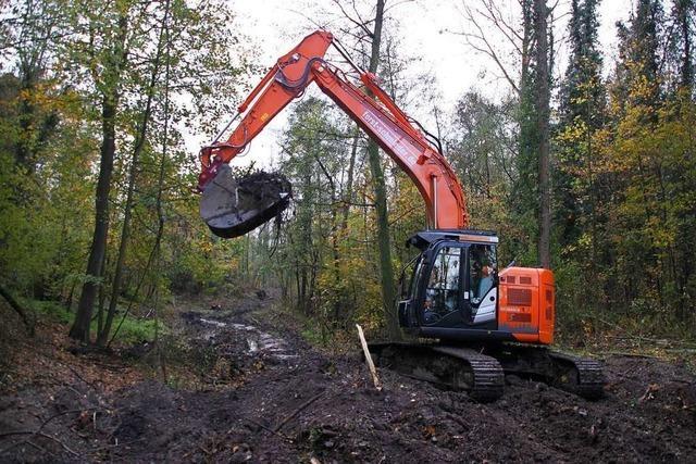 Die Arbeiten am Polder Breisach/Burkheim haben begonnen