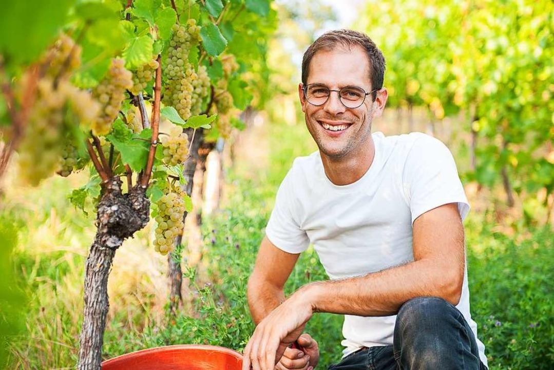 Weinbau ist für  Dominik Ernst  Handarbeit.  | Foto: Alexander Ziegler