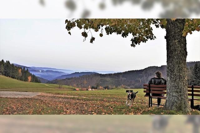 Entspannter Blick ins Tal