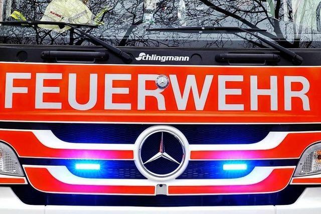 Feuerwehr in Lörrach muss wegen eines brennenden Baums ausrücken