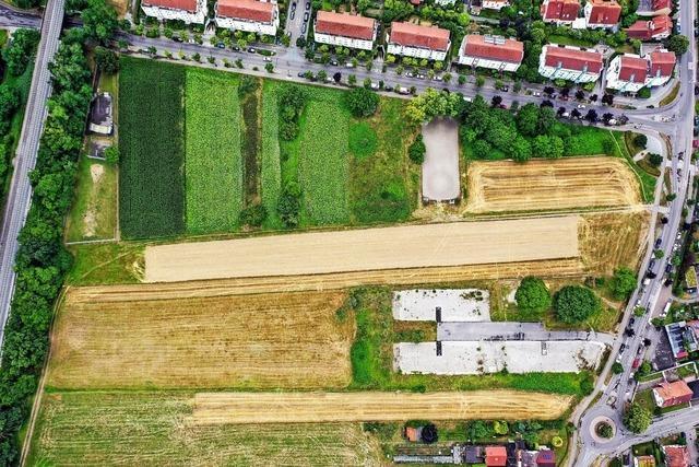 756 Bürger sind gegen Gundelfinger Baugebiet