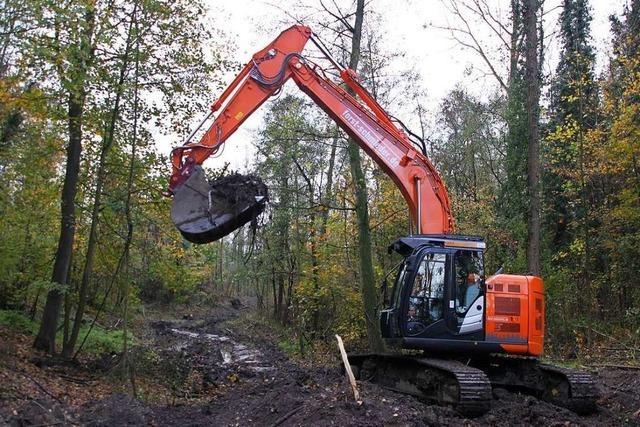 Kommunen klagen gegen Betrieb des Polders Breisach/Burkheim