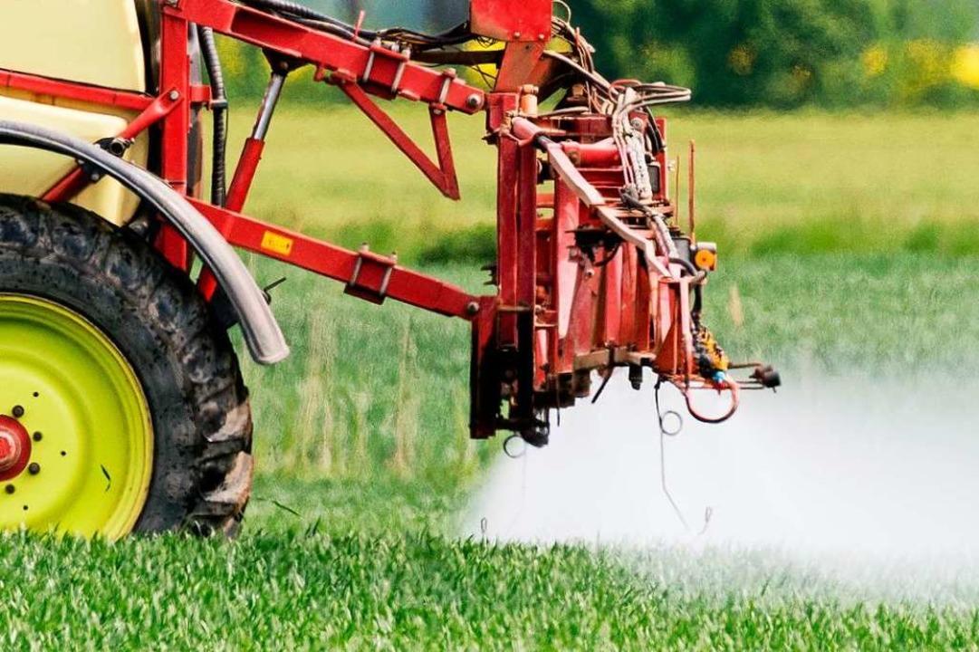 Pestizideinsatz auf einem Feld  | Foto: Patrick Pleul