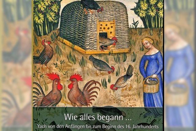 Die Lebenswelten in einer Dorfgemeinschaft des Mittelalters