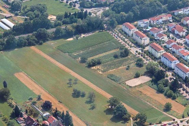Befürworter und Kritiker eines neuen Baugebiets in Gundelfingen haben gute Argumente