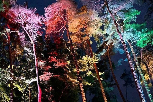 Die Lichtshow im Lahrer Stadtpark ist abgesagt