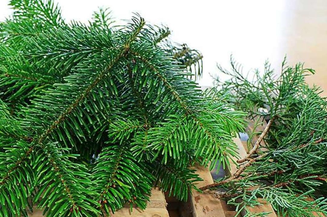 Aus Tannengrün, Thuja oder anderen imm...Zweigen binden Sie Ihren Adventskranz.  | Foto: Europa-Park
