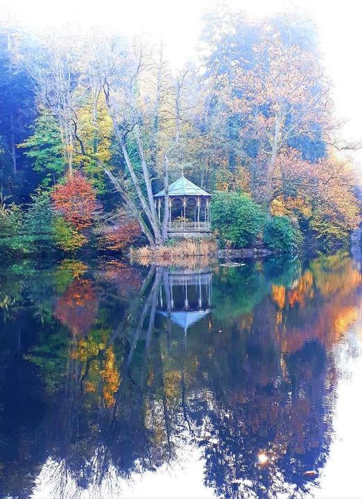 Der Freiburger Waldsee.    Foto: Christa Judith