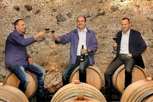 Gebietsweinprämierung 2020 - Ehrenpreis für den Sasbacher Winzerkeller