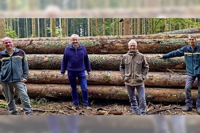 Hilferuf aus Zell: Waldumbau kostet Geld