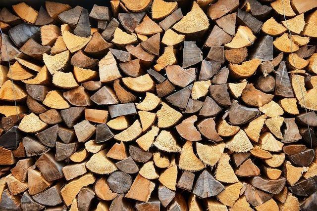 Warum es dem Bugginger Forst vergleichsweise gut geht