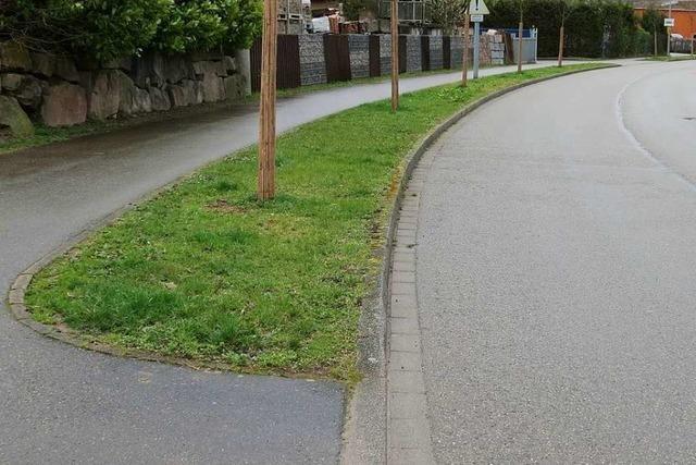 Seelbach will's auf Kreiseln und Verkehrsinseln lieber bunt statt grau