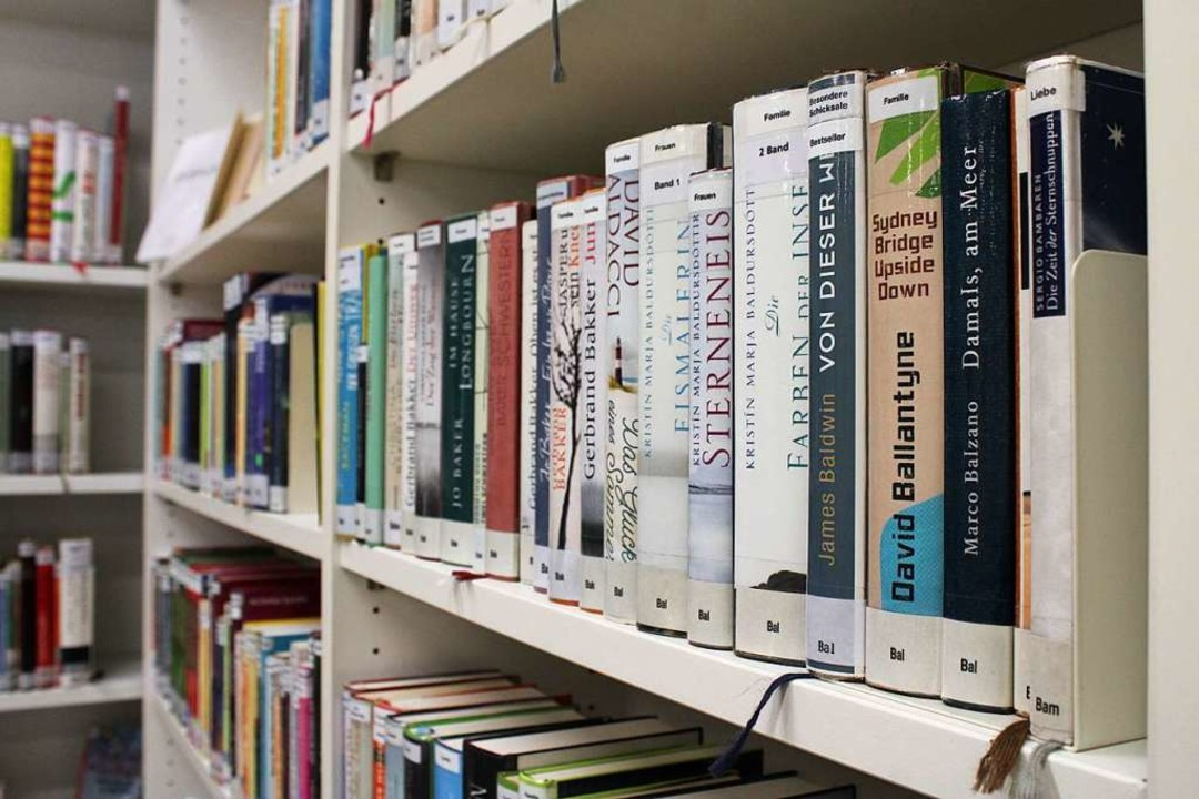 Blick ins Bücherregal  | Foto: Annika Sindlinger