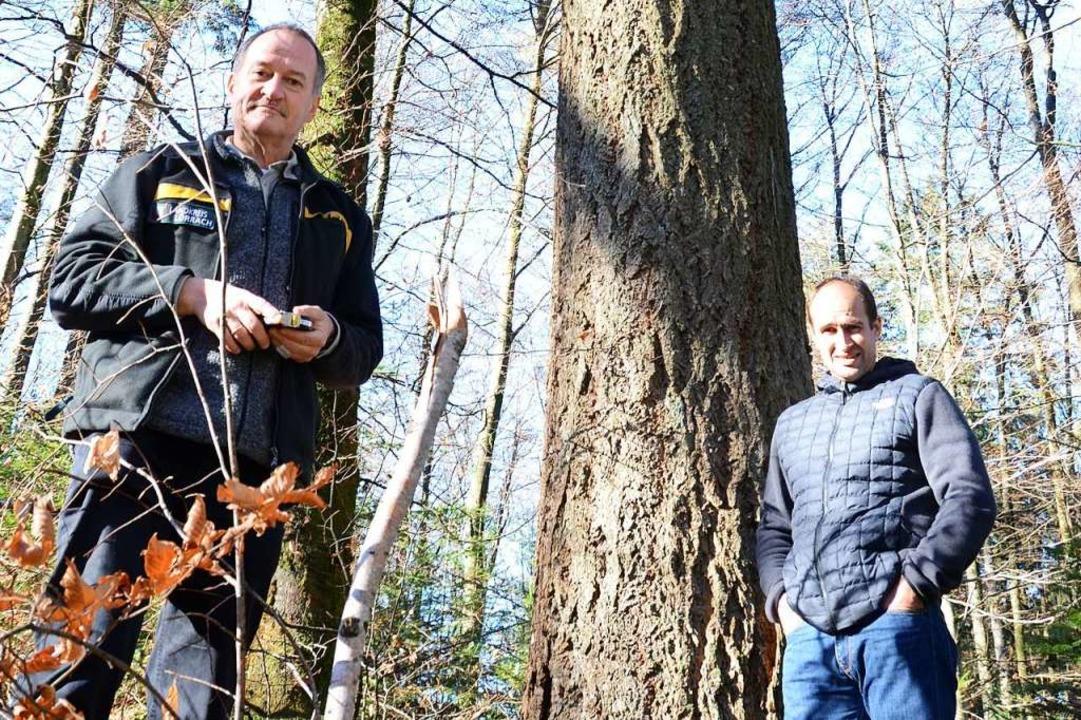 Bernhard Schirmer (links) und Frank Kr...erner Stadtwaldes zukunftsweisend ist.  | Foto: Moritz Lehmann