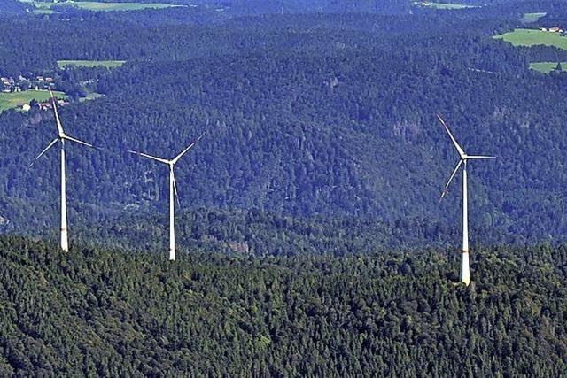 Ausgleich für den Natureingriff durch Windräder soll endlich angegangen werden