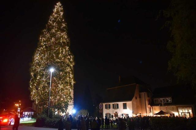 15.000 LED-Lichtlein bringen den Eichsler Weihnachtsbaum zum Strahlen
