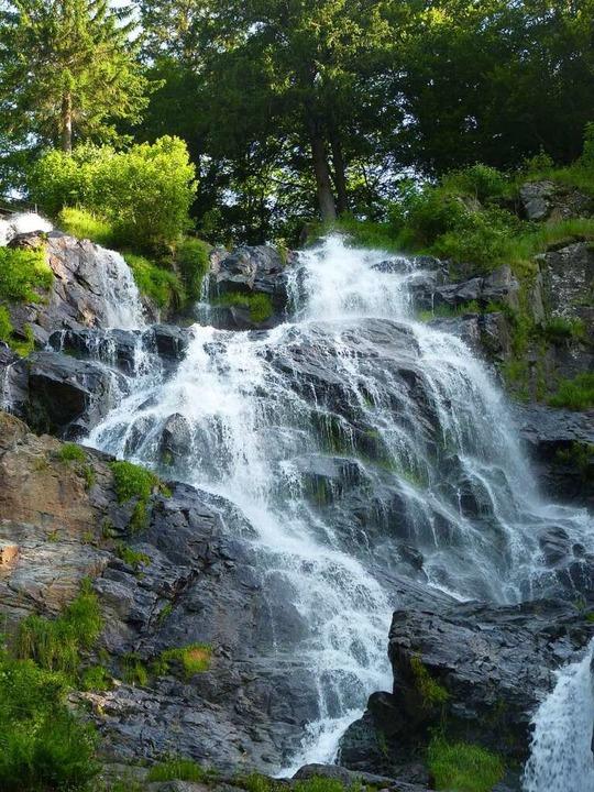 Der Stübenbach stürzt 97 Meter zwischen Todtnauberg und Aftersteg hinab.  | Foto: Dirk Sattelberger