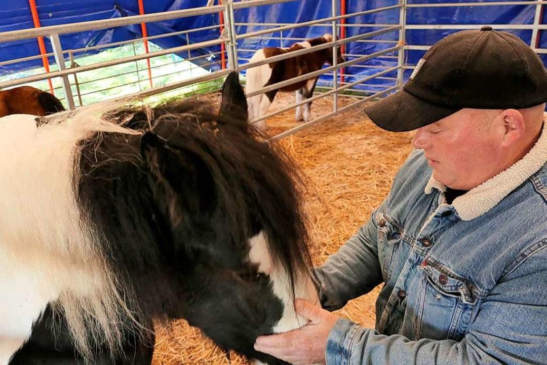 Zirkus-Chef Johann Zinnecker kümmert sich  um seine Ponys.  | Foto: Hans-Peter Müller