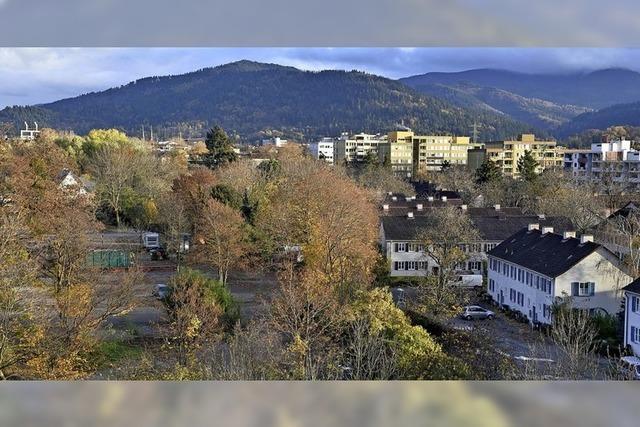 Neuer Ärger im Freiburger Metzgergrün