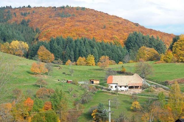 Landkreis Lörrach kürzt die Mittel zur Förderung des ländlichen Raums