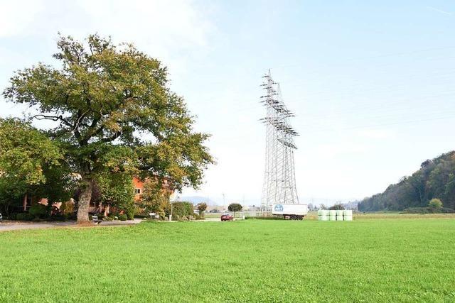 Anrainer wollen geplantes Baugebiet Scherracker in Höllstein verhindern