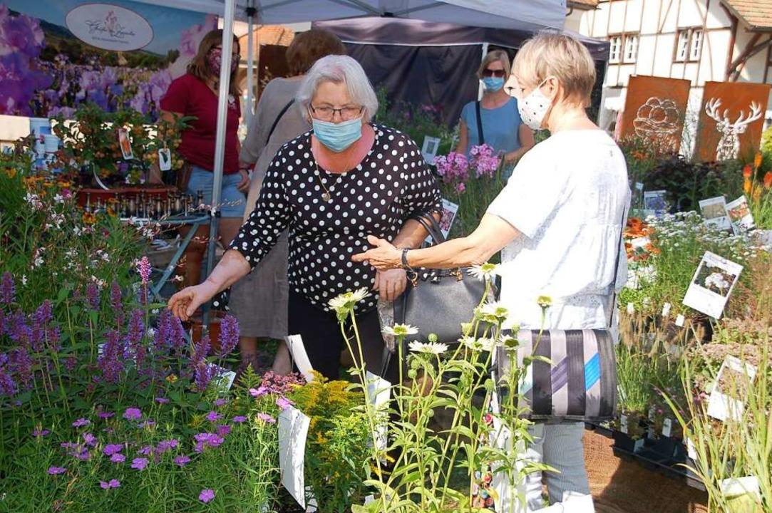 Die Gartenmesse Diga war 2020 eine der...es 2021 wieder Lockerungen geben wird.  | Foto: Petra Wunderle