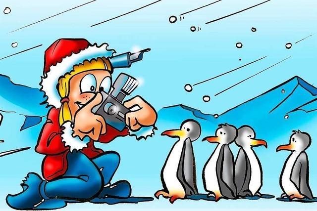 Der weiße Pinguin