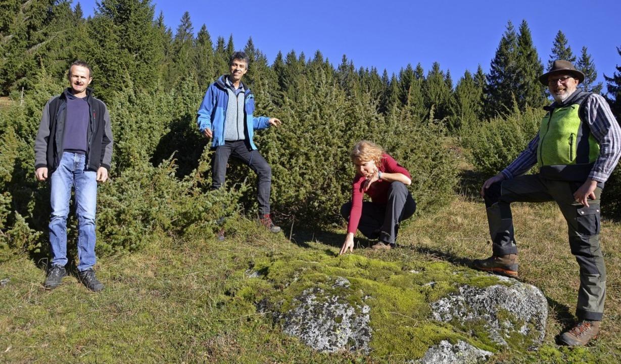 Nicht nur Wacholderbüsche (im Hintergr...ahme zur Offenhaltung der Landschaft.   | Foto: Christiane Sahli