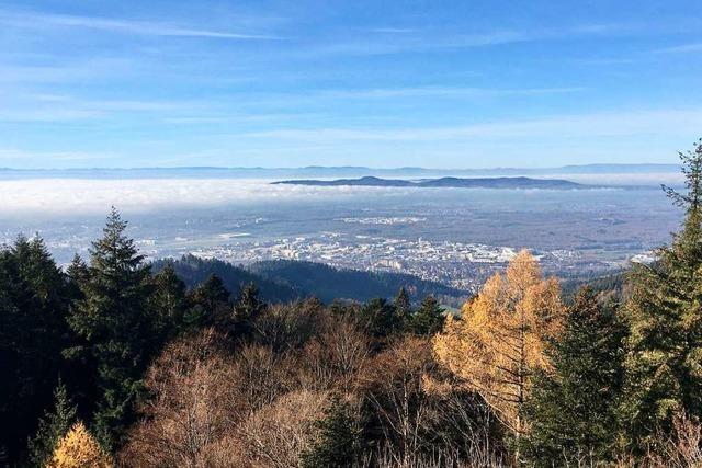 Herbstliche Panoramaperspektive vom Rosskopf