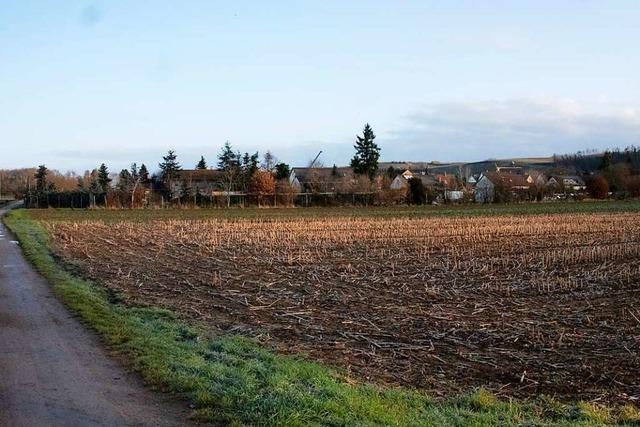 Bei neuem Baugebiet in Hügelheim sollen günstigere Preise möglich sein