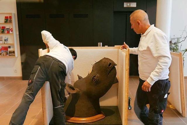 Hornloses Nashorn aus Offenburg wird in Stuttgart ausgestellt