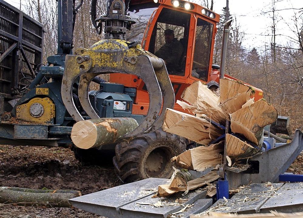 Die Hauinger Holzversteigerung, sonst ...Ereignis, fällt in diesem Winter aus.   | Foto: Paul Schleer