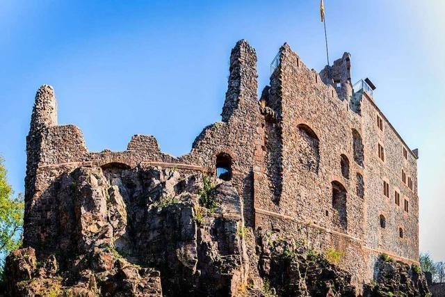 Fünf Kinder testen den Geroldsecker Burgpfad in Seelbach