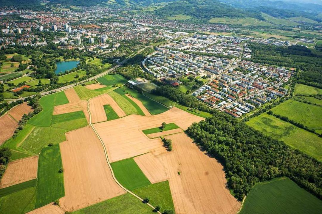 Das Langmattenwäldchen (unten rechts) ...und dahinter der Stadtteil Weingarten.    Foto: Nils Theurer