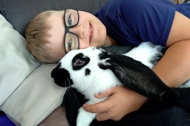 Kaninchenliebe