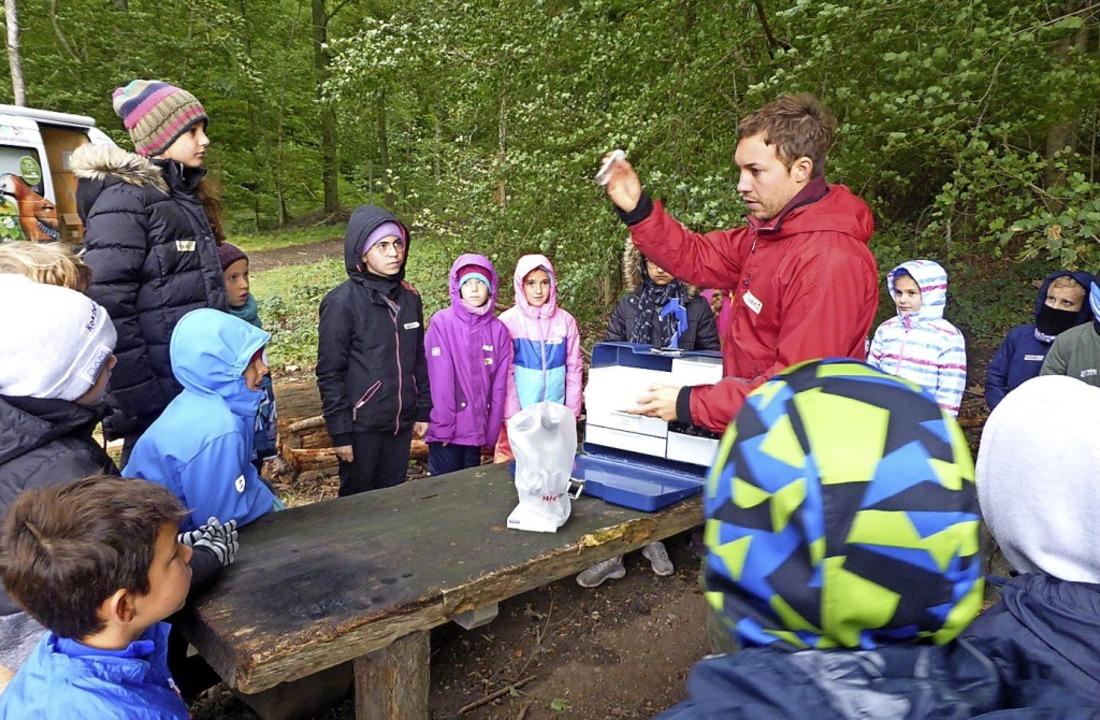 Unterricht im Wald mit Tobias Nagel vom Waldmobil   | Foto: Privat