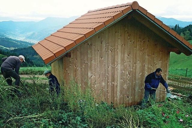 Umfeld der Hütte angelegt