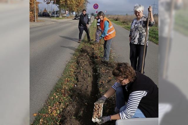 Die Landfrauen sorgen für Blumenpracht