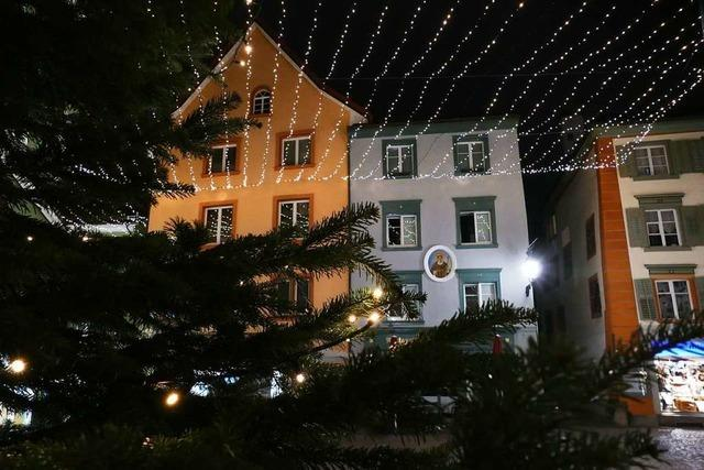 Stadtgärtnerei und Bauhof bringen Licht ins düstere Winterwetter