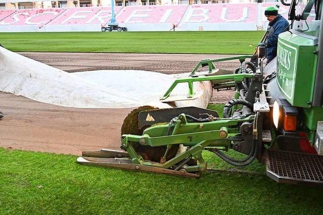 Fotos: Das neue SC-Stadion bekommt seinen Rasen