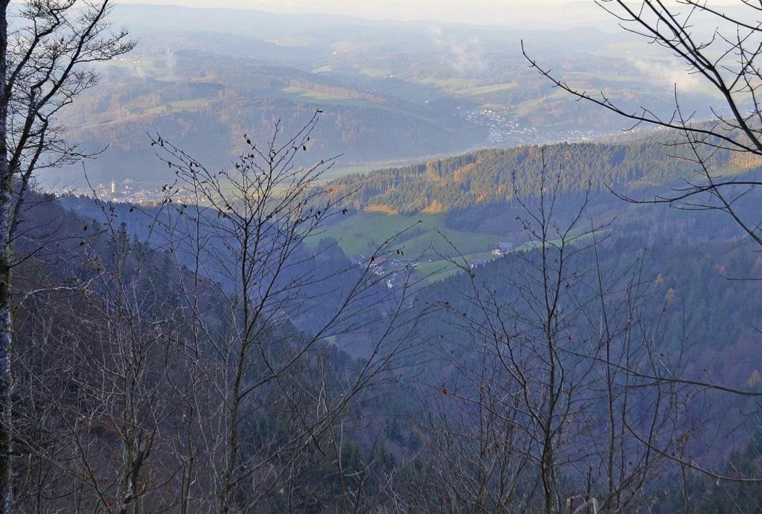 Der tiefe Einschnitt des Erzenbach zwi...m abschüssigen Gelände heranzukommen.   | Foto: Nikolaus Bayer