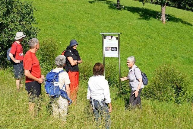 Biosphärengebiet bildet Guides aus, um Naturzusammenhänge erlebbar zu machen