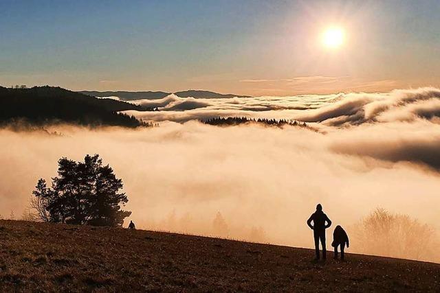Drohnenvideo: Inversionswetter bettet den Hochschwarzwald in Watte