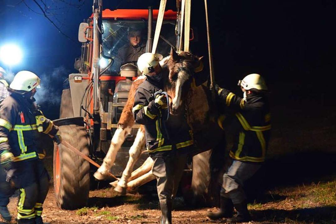 An Gurten mit dem Traktor wird das Pferd geborgen.  | Foto: Kamera24